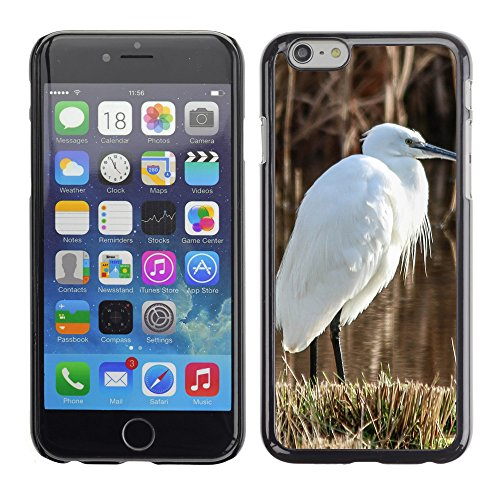 Premio Sottile Slim Cassa Custodia Case Cover Shell // F00009354 oiseau // Apple iPhone 6 6S 6G 4.7""