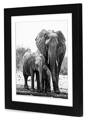 11x11 Black Picture Frame Matted To Fit Pictures 8x8