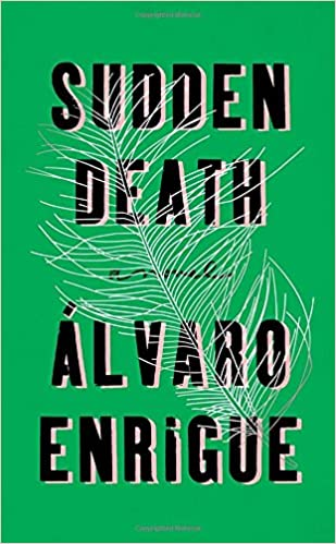 Image result for sudden death book cover