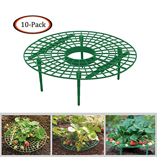 aliveGOT 1/10 Pcs Strawberry Plant Support - Improves Plant Health - Prevents Ground Rot, Keeping Fruit Elevated to Avoid Ground Rot (10 pcs)]()