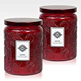 Dynamic Collections Aromatherapy Scented Candles - Good for Minimalistic Home Decor, Stress Relief, and Present Set of 2 16 Ounce Mason Jar Candles (Warmth)