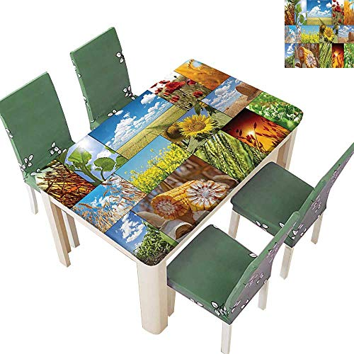Fitted Polyester Tablecloth Sunlight Sunflower Cereal and Wheat Field Rustic Farm Theme Idyllic Landscapes Print Multi Washable for Tablecloth 50 x 72 Inch (Elastic -