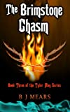 download ebook the brimstone chasm: book three of the tyler may series pdf epub