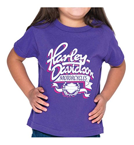 Bravado Girls T-shirt (Harley-Davidson Little Girls' Ribbon H-D Short Sleeve Toddler Tee, Purple (3T))