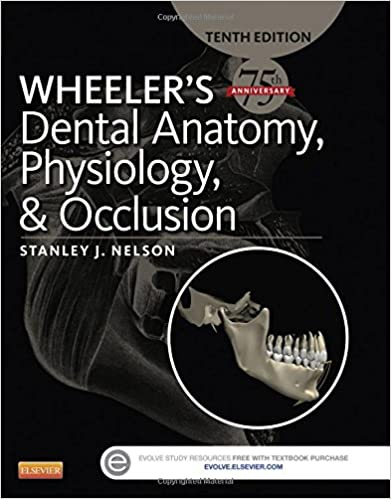 Wheeler\'s Dental Anatomy, Physiology and Occlusion, 10e ...