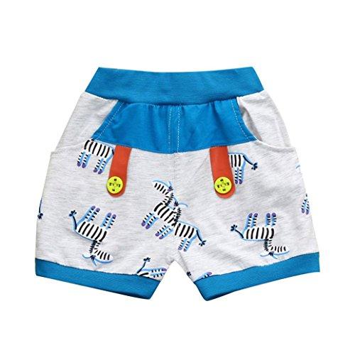Price comparison product image Ankola Children Summer Cartoon Zebra Print Shorts Toddler Kid Baby Boys Summer Casual Cotton Blend Shorts Pants with Pockets (Bule, 24M)