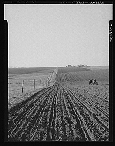 Historic Photos 1940 Photo Planting corn with two-row horse planter. Jasper County, Iowa Location: Iowa, Jasper County