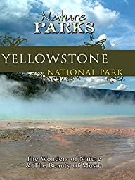 Nature Parks - Yellowstone National Park, Wyoming