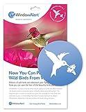 WindowAlert Hummingbird Decals