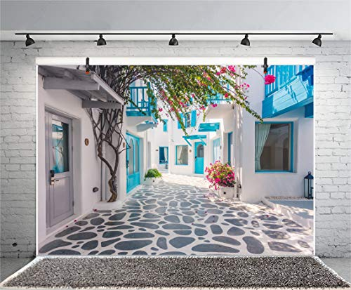 Leyiyi 6x4ft Photography Backdrop Greece Street Background Italian City View Greece Down Town Mediterranean Style Architecture 3D Wedding Ceremony European Travel Photo Portrait Vinyl Studio Prop by Leyiyi (Image #3)
