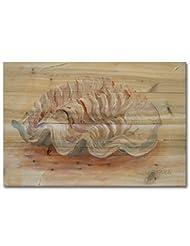 WGI-GALLERY 4030 Sea Shell No.1 Wooden Wall Art