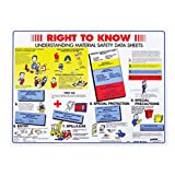 Brady 18'' X 24'' Black/Blue/Red/White/Yellow Paper Safety Poster''RIGHT TO KNOW UNDERSTANDING MATERIAL SAFETY DATA SHEETSetc''