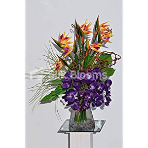 Silk Blooms Ltd Artificial Orange Bird of Paradise Arrangement w/Purple Orchids and Controted Willow