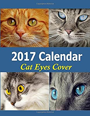2017 Calendar: Fill in the Blank Calendar with Daily Log and Note page for each calendar month. 14 month calendar from December 2016 thru January 2018. Cat Eye Calenday Cover