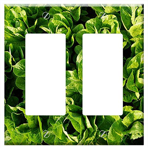 Switch Plate Double Rocker/GFCI - Salad Green Eat Frisch Vitamins Healthy 1
