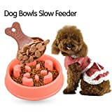 Slow Feeder Dog Bowl - Slow Eating Dog Bowl - Pet Bloat Stop Dog Bowl - Slow Down Feed Dog Cat Feeding Bowl - Interactive Feeder Eco-friendly Durable Non-Toxic Preventing Choking Dog Feeder Slow Eating Pet Bowl Healthy Design Bowl with a Dog Food Spoon by Stwie