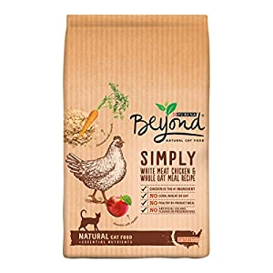 Purina Beyond Natural White Meat Chicken & Whole Oat Meal Recipe Dry Cat Food