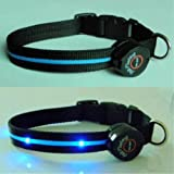 Dog Collar with Blue LED Lights, Multi-Function, Medium