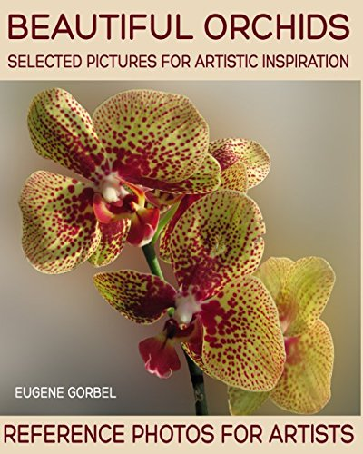 Beautiful orchids. Selected pictures for artistic inspiration: Reference Photos for Artists (Photo Impressionism)