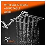 HotelSpa Square Stainless Steel 8 Inch Shower Head with Clear Acrylic Rim with Solid Brass Adjustable Extension Arm