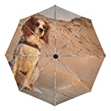 A Cavalier King Charles Spaniel printing inside travel Umbrella easy to carry and Auto Open Close