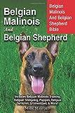 Belgian Malinois And Belgian Shepherd: Belgian