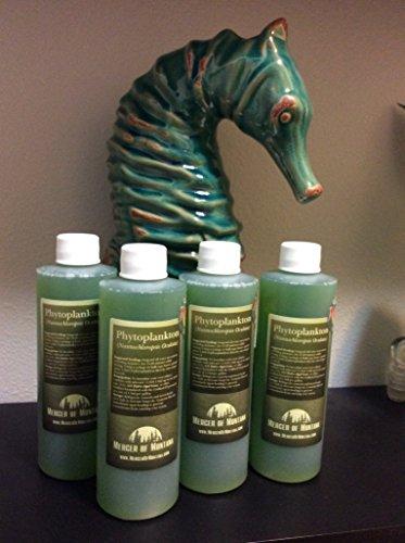 Live Marine Phytoplankton - (x4) 8oz Bottles - Micro Algae Dha
