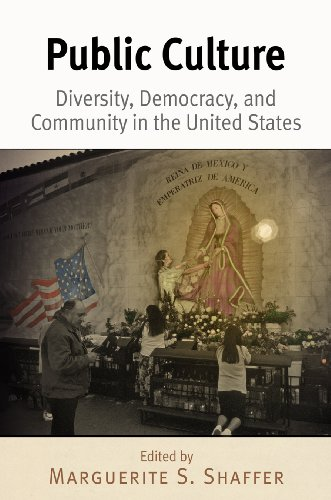 Public Culture: Diversity, Democracy, and Community in the United States