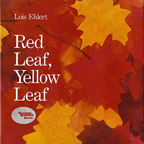 Image result for red leaf yellow leaf book