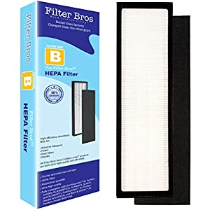 FLT4825 True HEPA Replacement Filter B for GermGuardian AC4825 Home Air Cleaner Purifiers, AC4300BPTCA / AC4850PT with Pet Technologies, AC4900CA Systems Captures Pets/Germ (1, Filter B)