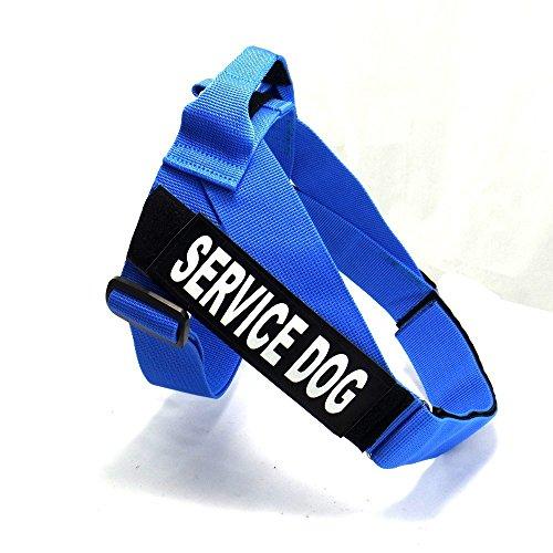 35 inch dog collar - 3
