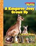 A Kangaroo Joey Grows Up, Katie Marsico, 053117476X