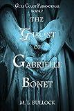#7: The Ghost of Gabrielle Bonet (Gulf Coast Paranormal Book 7)