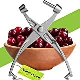 Best Olive Pitters - Cherry Pitter Olive and Cherry Pitting Tool Review