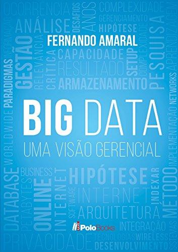 Big Data: Uma Visão Gerencial: Para Executivos, Consultores e Gerentes de Projetos