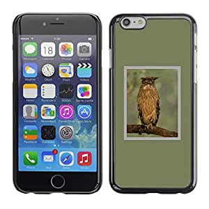 Plastic Shell Protective Case Cover || Apple iPhone 6 Plus 5.5 || Branch Feathers Wings Spring @XPTECH