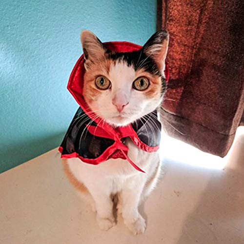 Auch Cat Costume Bat Wings Pet Costumes Pet Apparel for Small Dogs and Cats Muffler Cap Small Cats & Dogs Kitten Puppy Christmas Party]()