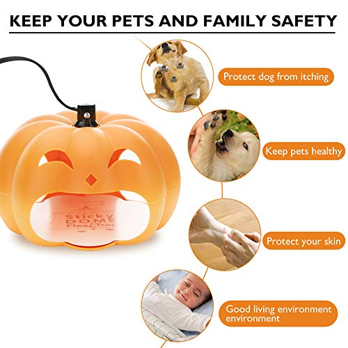 Aoile Halloween Pumpkin Light - Unique Pumpkin Design Fleas Flying Ants Pests Trap Lamp Halloween Decorations Outdoor & Indoor, UK -
