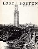 img - for LOST BOSTON book / textbook / text book