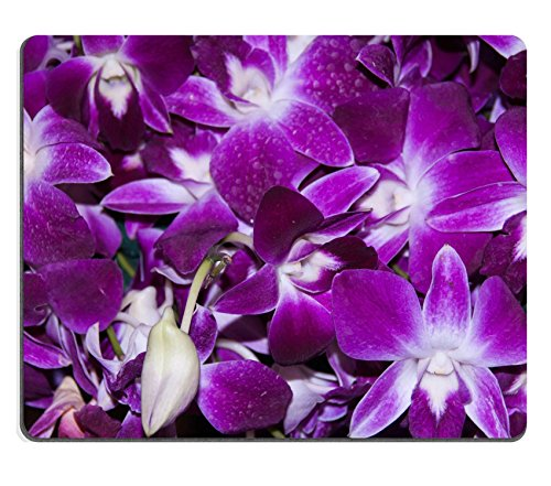 luxlady-gaming-mousepad-image-id-34340885-purple-orchid-flower-beautiful-background