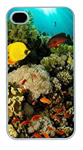 Coral Reef Fish Polycarbonate Custom Case Cover Protector for iPhone 5c and iPhone 5c White