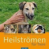 Heilströmen für Tiere: Selbsthilfe für Hunde, Katzen, Kaninchen und Meerschweinchen