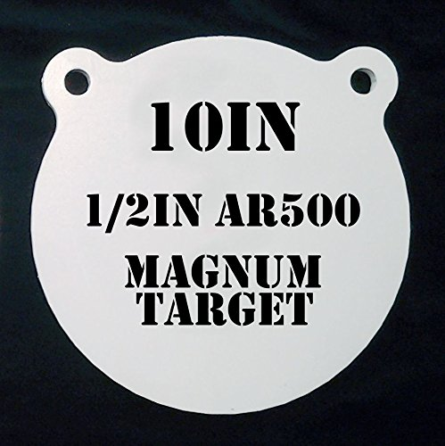 10 inch target - 7