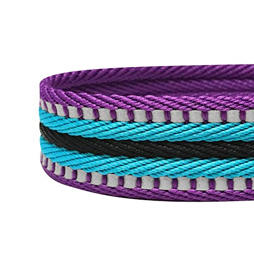 Blueberry Pet 8 Colors 3M Reflective Multi-Colored Stripe Safety Training Martingale Dog Collar, Violet and Celeste, Large, Heavy Duty Adjustable Collars for Dogs
