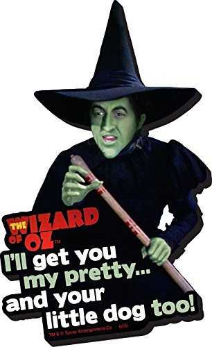 Aquarius Wizard of Oz Witch Funky Chunky Magnet]()