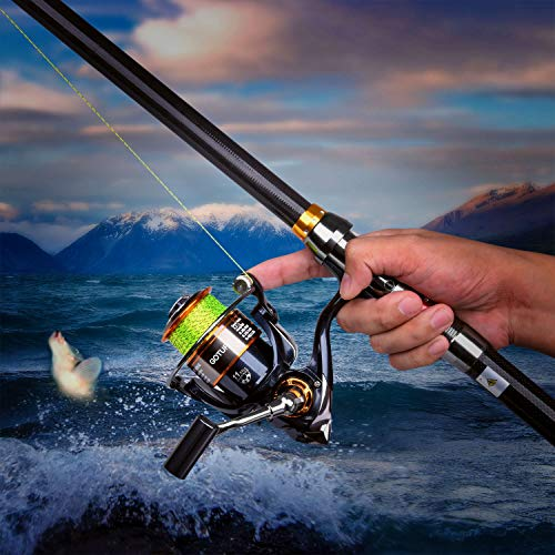Goture GT4000 11BB Metal Spinning Fishing Reel Carp Reels Carp Fishing Wheel