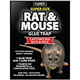 Harris Toughest Rat Glue Trap (2/Pack)
