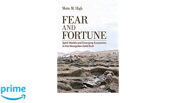 Fear and Fortune: Amazon.es: Mette M. High: Libros en ...