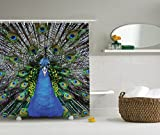 Ambesonne Peafowl Feathers Decor Collection, Magnificent Peacock Picture Vibrant Colorful Feathers Photo Pattern, Polyester Fabric Bathroom Shower Curtain Set with Hooks, Blue Green