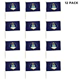 US Air Force Flags 12 Pack